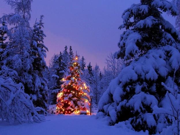 ABETE ghirlande natalizie