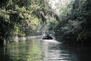 Tortuguero_boat costarica