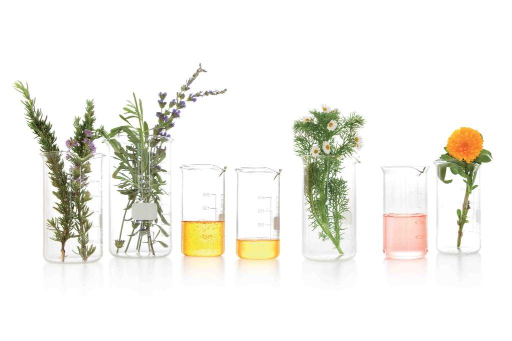 bio-oil apertura