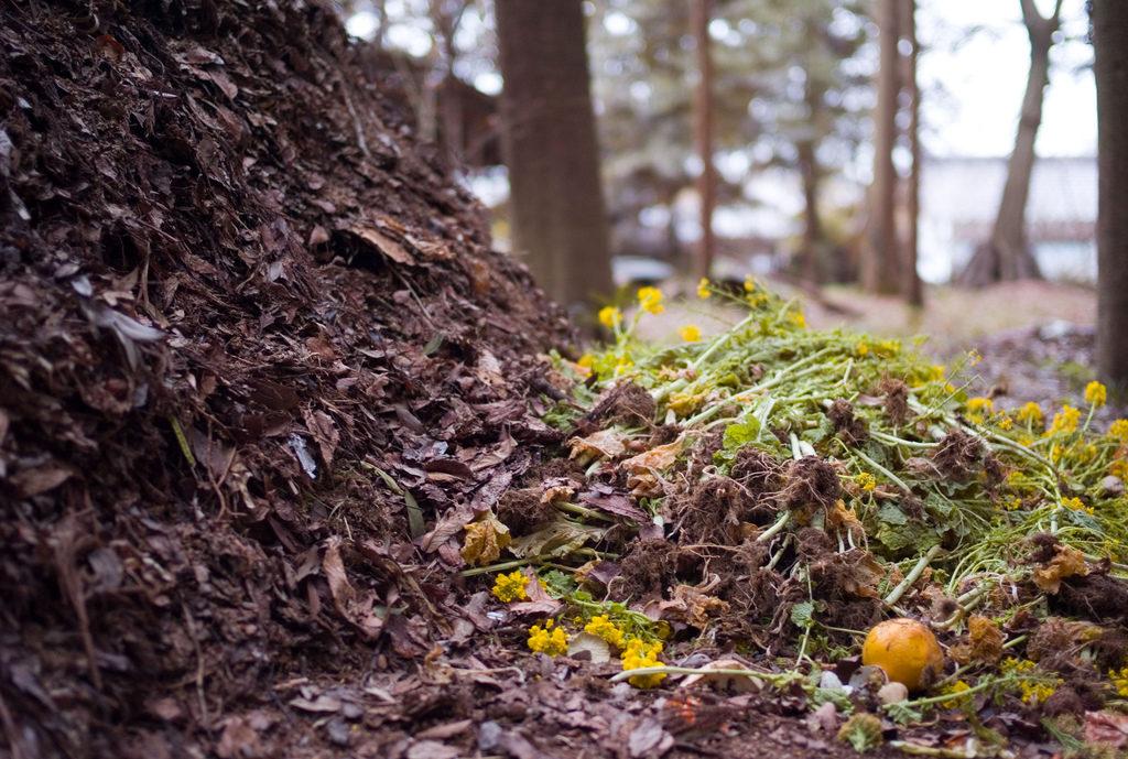 preparati biodinamici compost