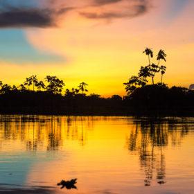 I colori del tramonto della Foresta amazzonica, in pericolo a causa dell'intensa deforestazione degli ultimi anni