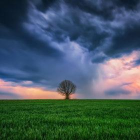 Si è scoperto che più la temperatura media della superfice terrestre è aumentata nel mondo, più le tempeste che si sono verificate hanno avuto intensità crescente.
